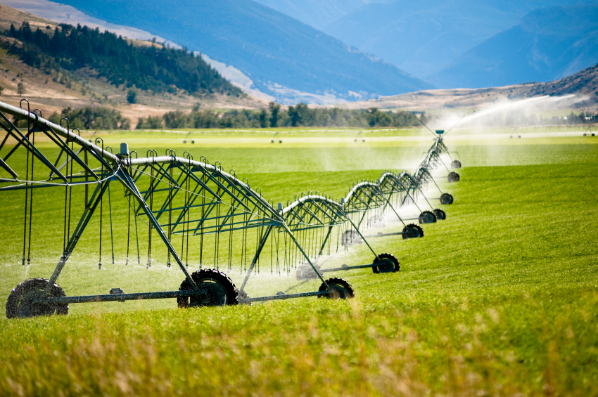 Irrigation Quality tests help with sprinkler systems