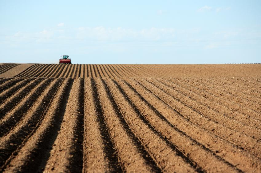 Soil ready for amendment